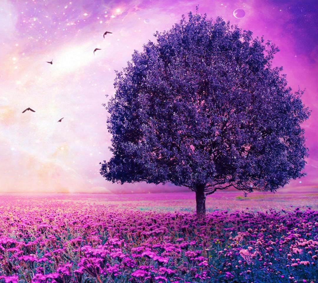 درخت بهاری و باغ گل های بنفش