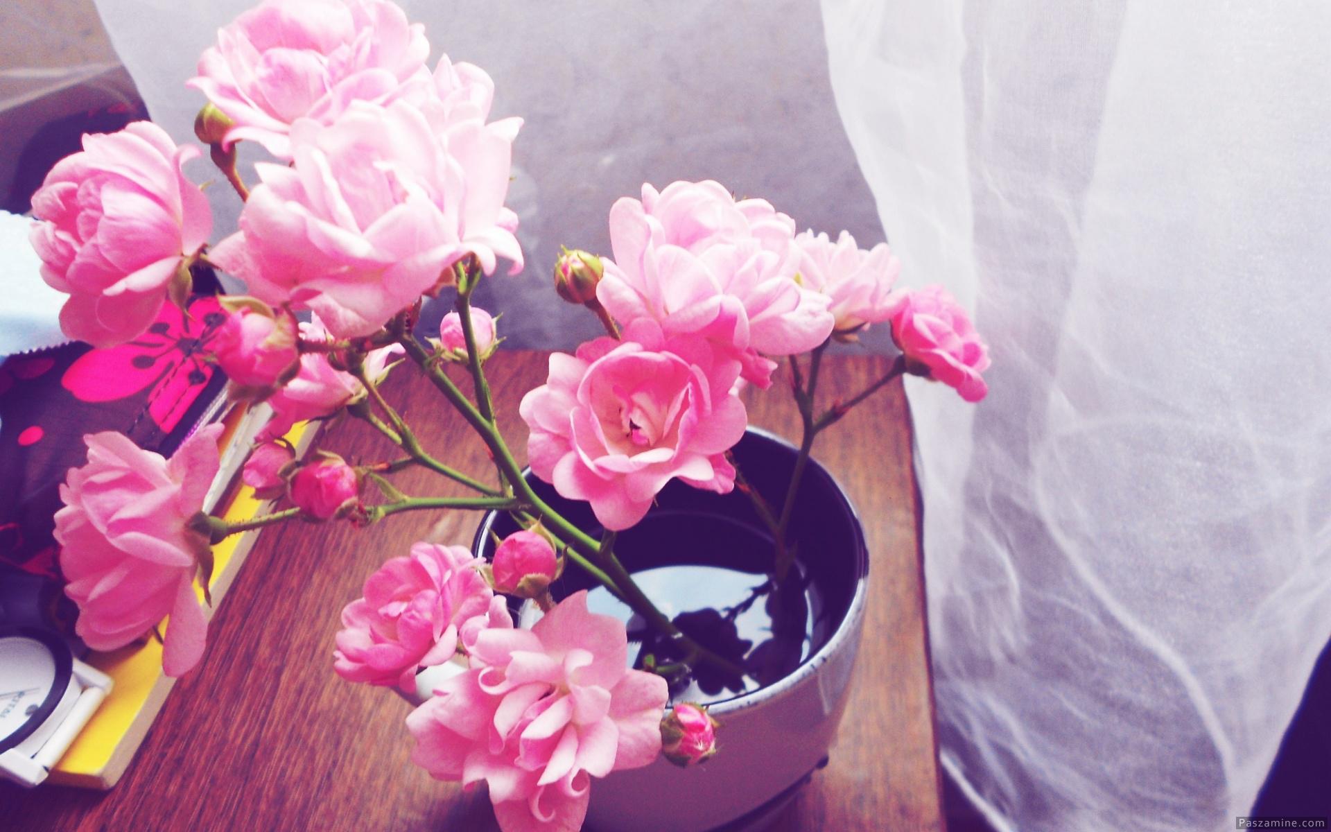 گل های بهاری پس زمینه